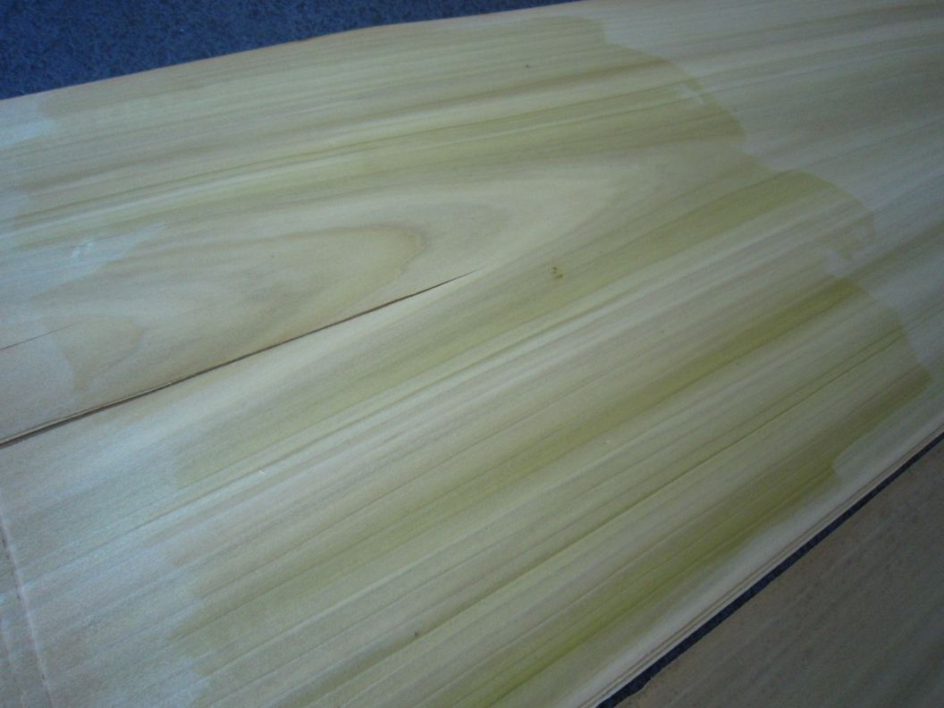 F682-2 Tulpen 40x290cm