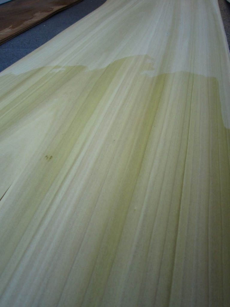 F682-4 Tulpen 40x290cm