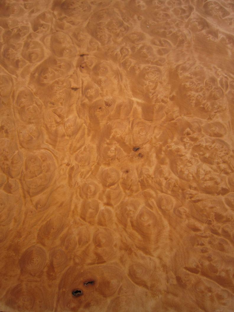 G242-4 Madrone Wortel 39x57cm
