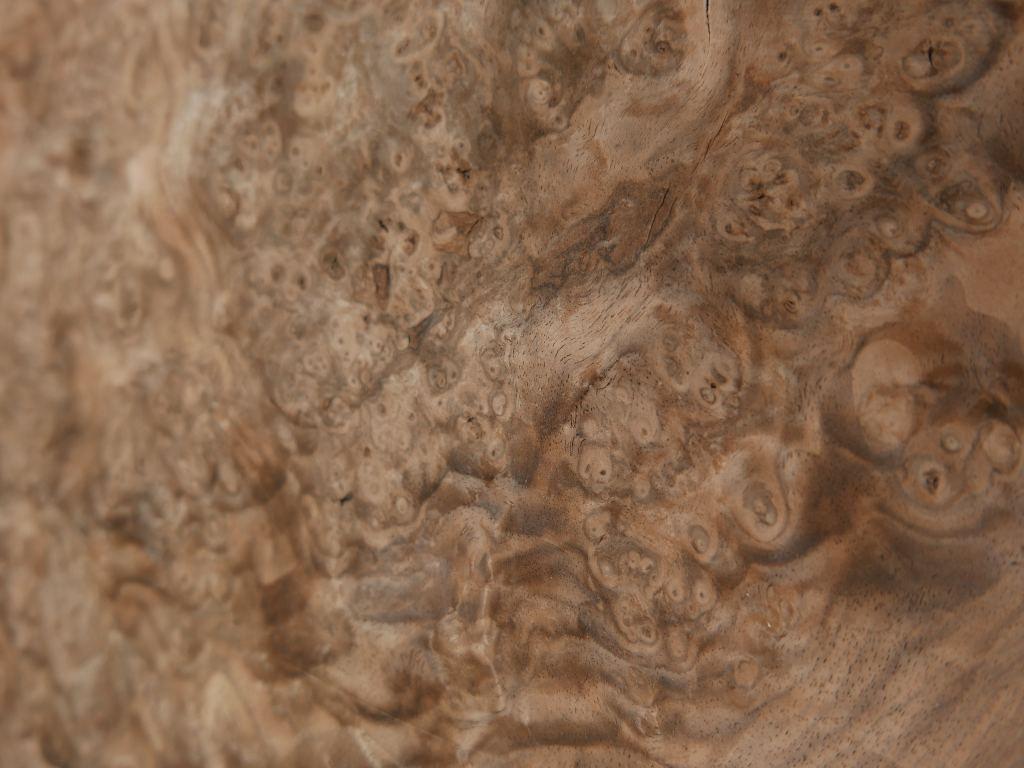 G355x-8 Spaans Noten wortel 24x62cm