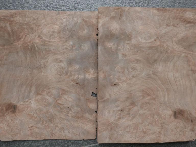 G439-2 Noten Wortel 24,5×31,5cm