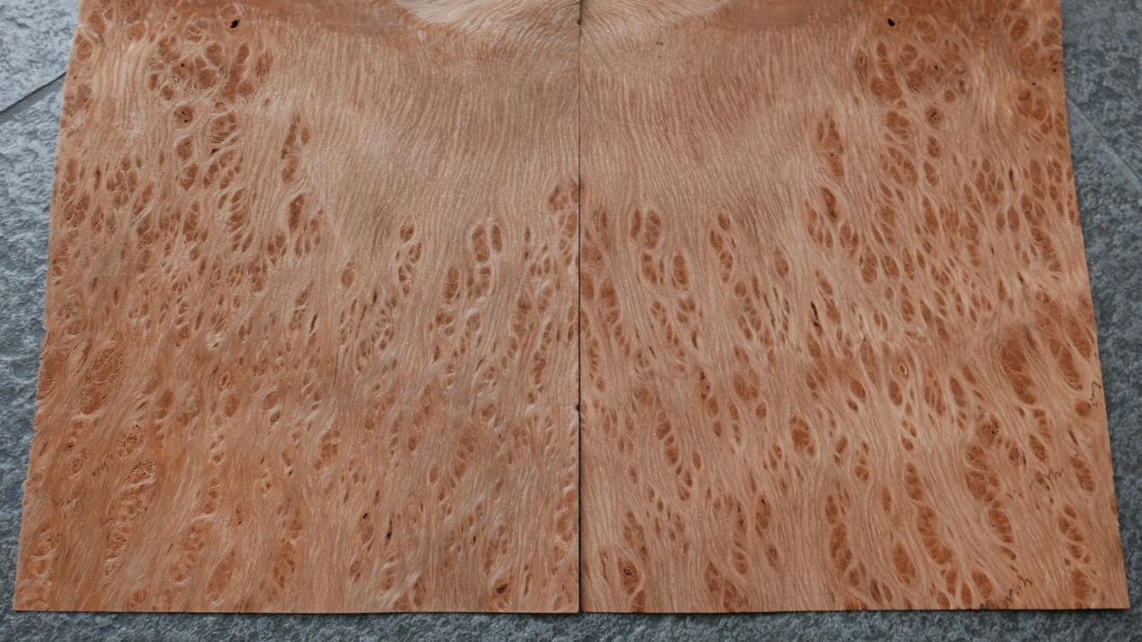 G872-2 Vavona Wortel 17,5×27,5cm 17st