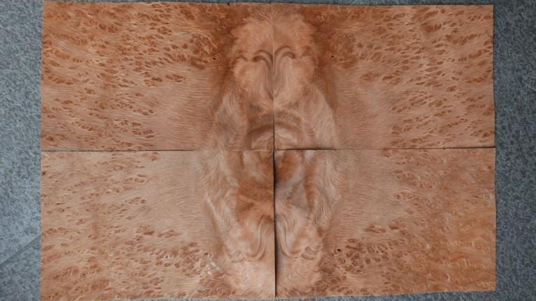 G872-3 Vavona Wortel 17,5×27,5cm 17st