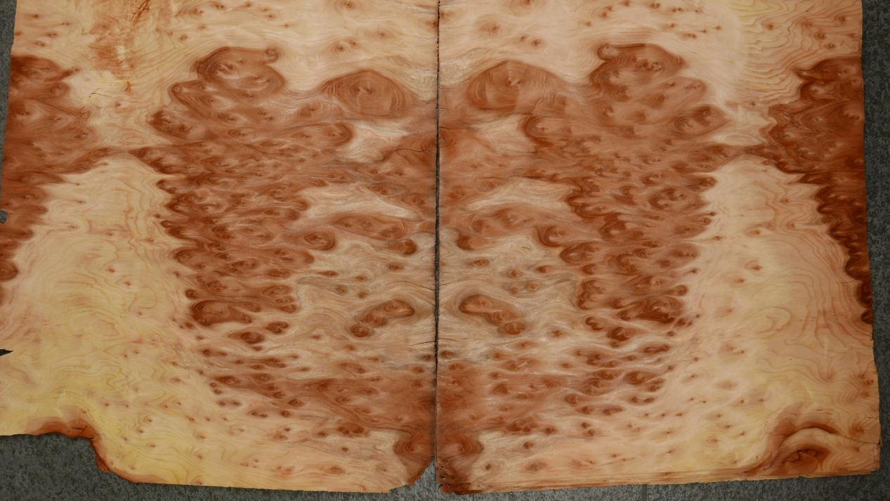 G875-4 Vavona (Redwood) Wortel 37x44cm 11st