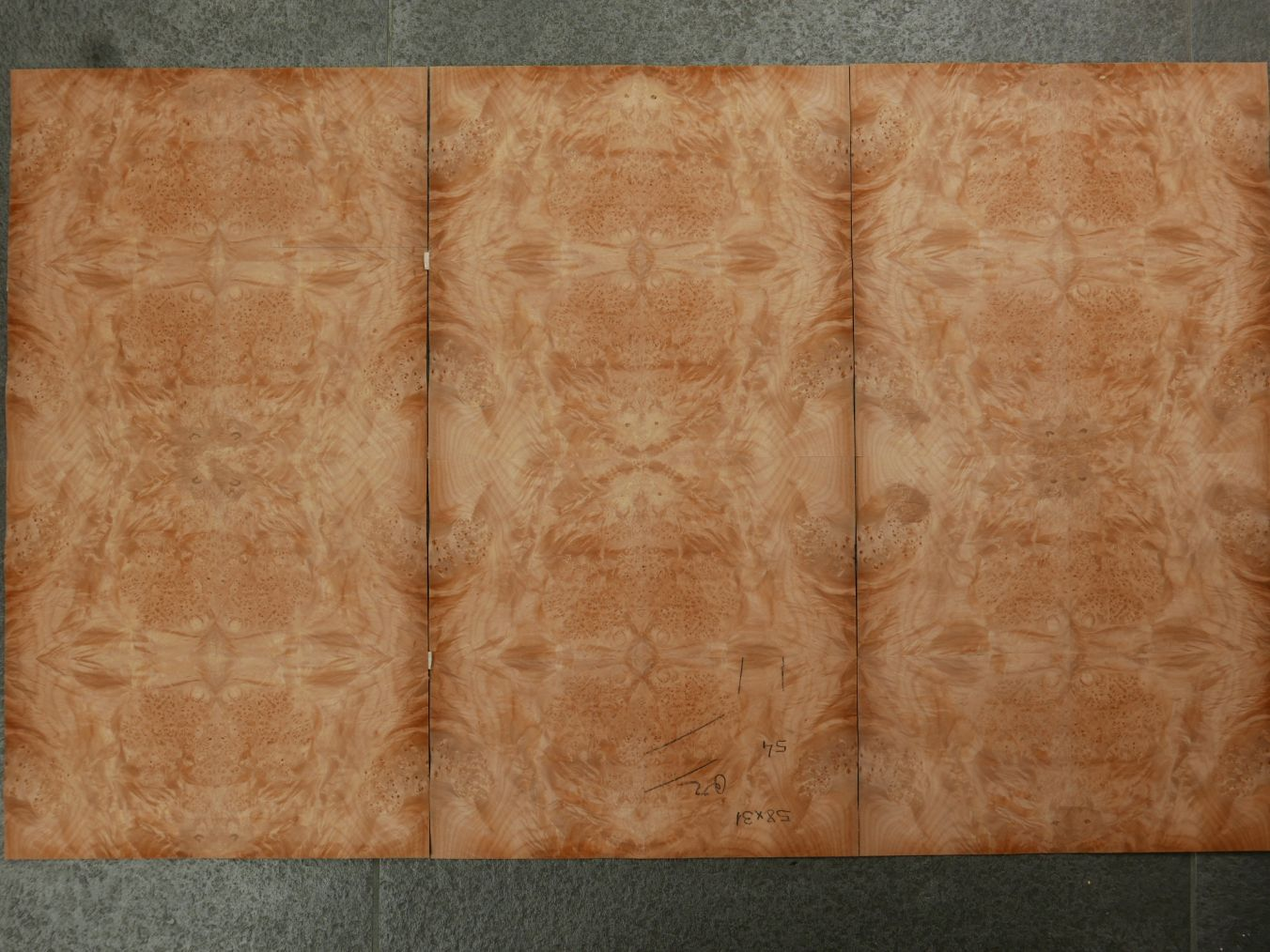GW086-3 Gevoegd Amerikaans Esdoorn Wortel 31x58cm 3st