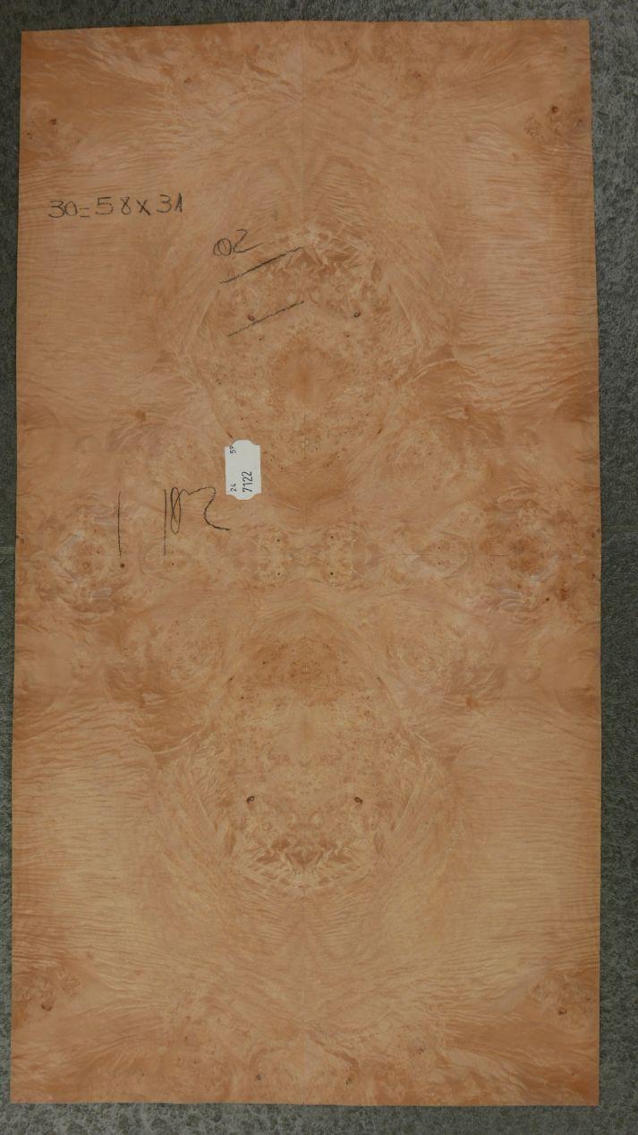 GW092-2 Gevoegd Esdoorn Gewaterd Wortel 31x58cm 1st