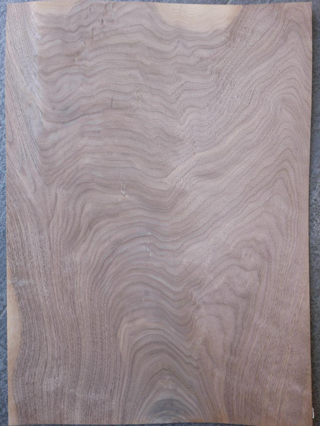 A0009-1 Noten Bloem 38x56cm 6st
