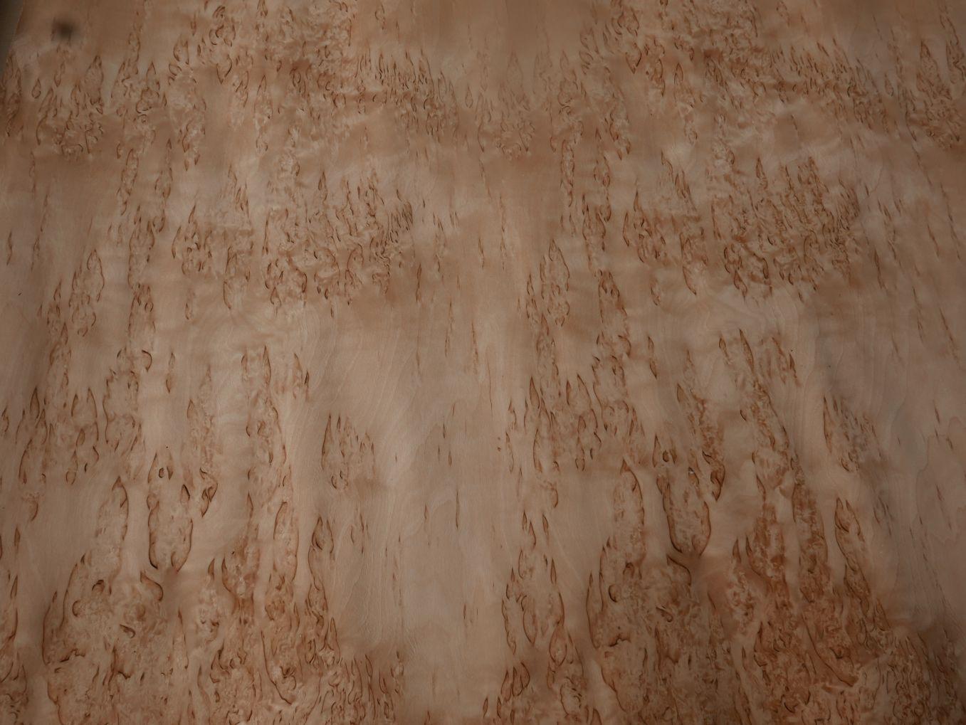 A0121-2 Berken Wortel (Karelisch Berken) 70x213cm 3st