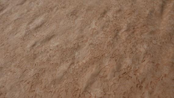 A0124-1 Berken Wortel 33x205cm 1st