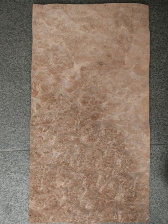 A0151-4 Noten Wortel 31x58cm 20st