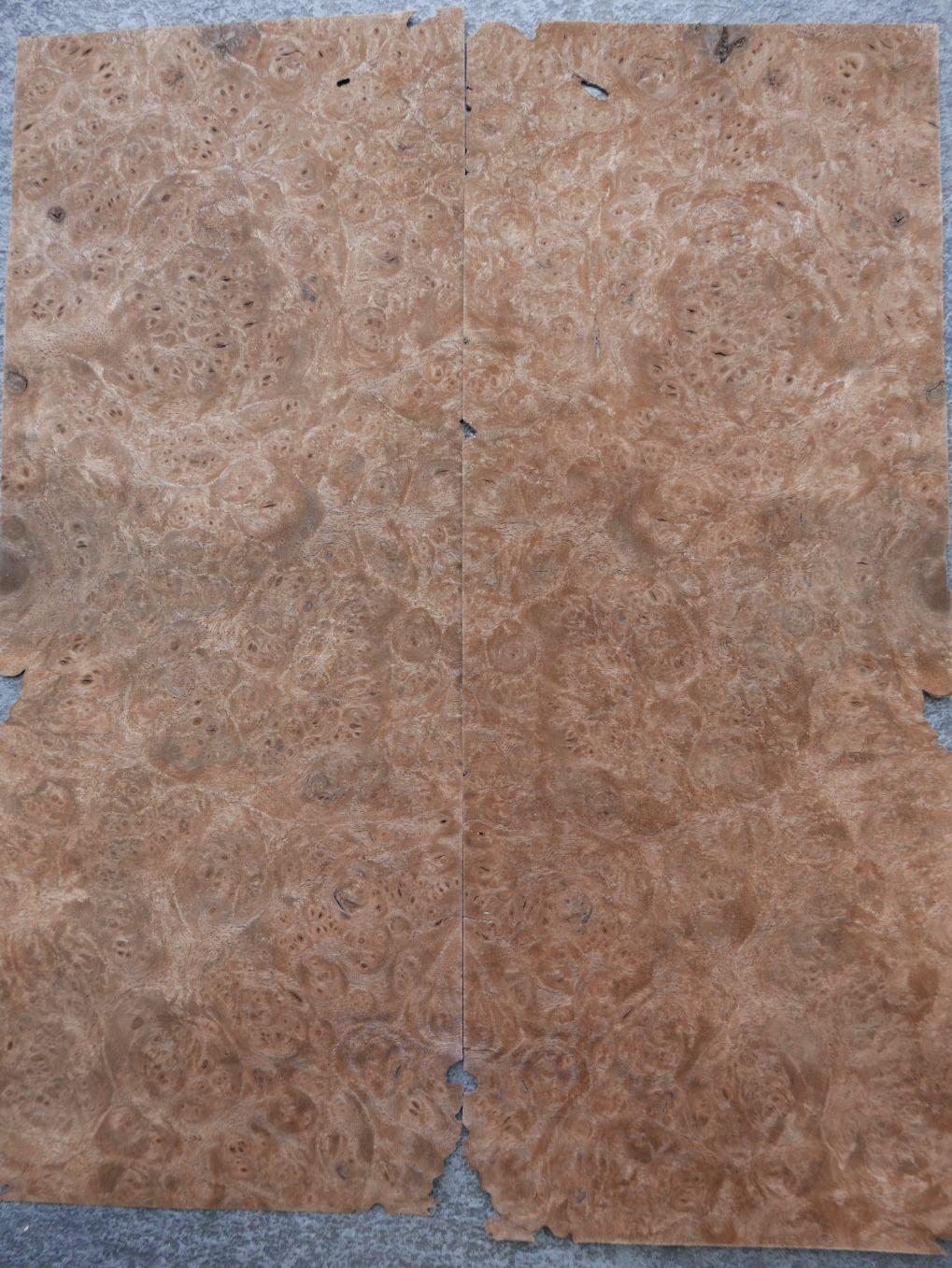 A0308-1 Noten Wortel 14x38cm 23st