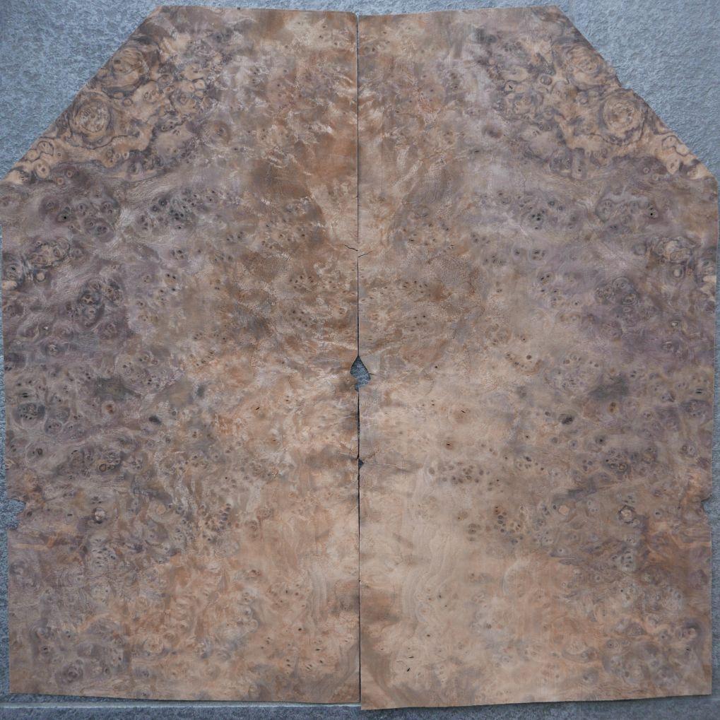 A0309-1 Noten Wortel 15-26,5×39-52,5cm 16st