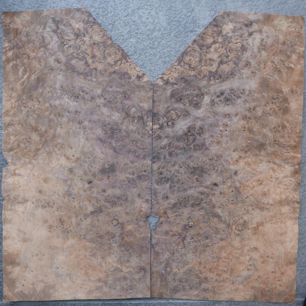 A0309-2 Noten Wortel 15-26,5×39-52,5cm 16st