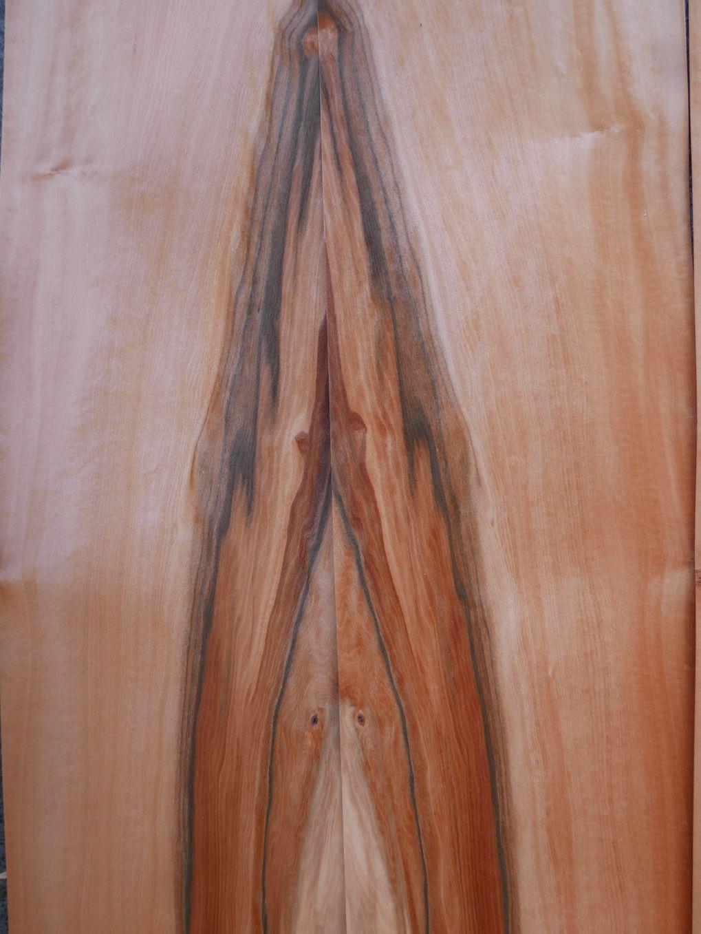A0322-1 Tineo 14,5-15x152cm 22st